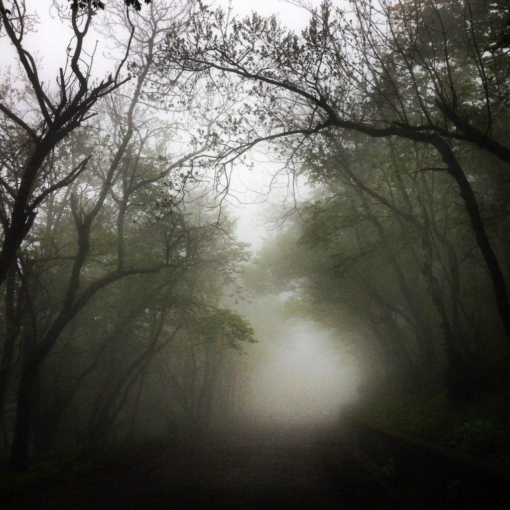 Туман на горе Машук, город Пятигорск.