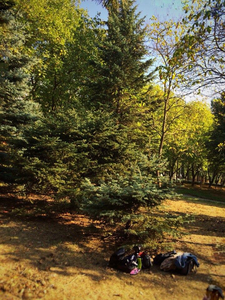 Город Пятигорск, микрорайон Ромашка, Комсомольский парк.  5 октября 2015 года.