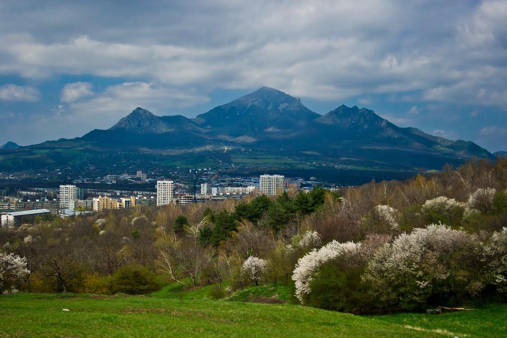 Вид на гору Бештау с подножия горы Машук. Пятигорск, весна.