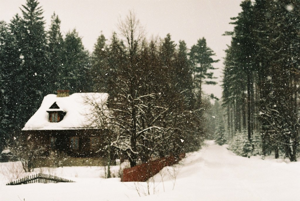 Зимняя сказка, Пятигорск. Дом в лесу. Падает снег.